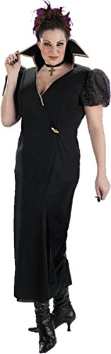 Disguise Costumes Women's Transylvania Witch Plus (Halloween Disguise Ideas)