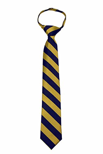 (B-ZIP-JCS-ADF-1-7 - Boys Zipper Repp Stripe College Printed Necktie Ties)