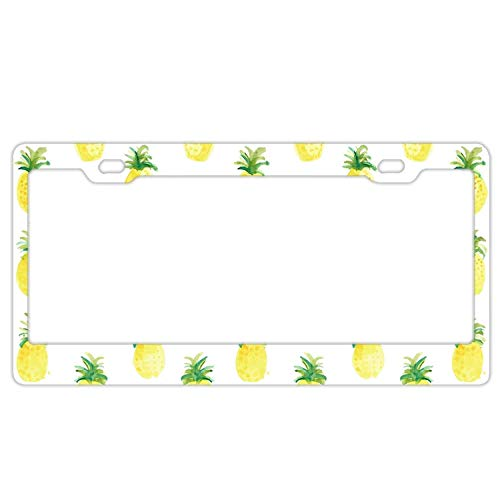 (Zoomber License Plate Frame, Waterproof Stainless Steel Cat Car Tag Frame for Women/Men/Girls, Watercolor Fruit License Plate Holder Fruit Salad Pineapple)