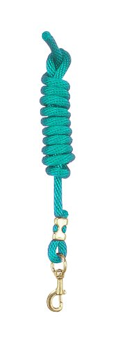 - Perri's Poly Nylon Lead with Snap, Teal, 8-Feet
