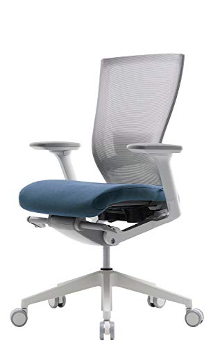 SIDIZ T50 Highly Adjustable Ergonomic Office Chair (TNB500LDA): Advanced Mechanism for Customization/Extreme Comfort, Ventilated Mesh Back, Lumbar Support, 3D Arms, Seat Slide/Slope (Blue)