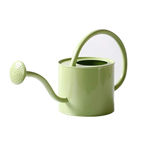 Flower Watering Can Wrought Iron Pouring Kettle Small Watering Can Gardening Home Balcony Indoor Flower Plant Sprinkler (Color : As Shown, Size : 6.25.9 inches)