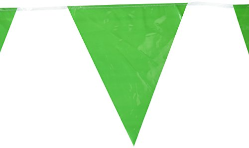 Indoor/Outdoor Pennant Banner (green) Party Accessory  (1 count) (1/Pkg) ()