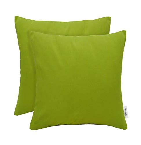 RSH Décor Set of 2 Indoor Outdoor Decorative Throw Pillows Sunbrella Canvas Macaw Green (20