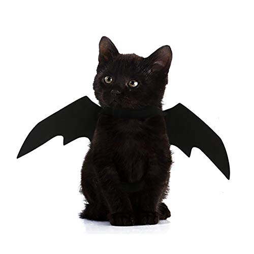 Sgift Halloween Pet Costumes for Cats,Halloween Pet Bat Wings Cat Dog Bat Costume,Pet Apparel Halloween Cat Costume,Funny Cat Costumes for Pets - Black Cat Wings Halloween]()