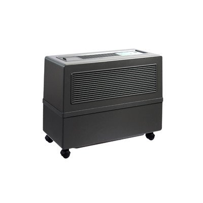 Professional Humidifier Color: Charcoal