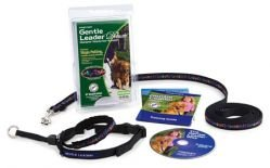 Gentle Leader Deluxe Head Collar and Leash, Extra Large, Bones On Square/Black, My Pet Supplies
