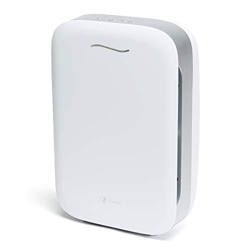Haverland Airpure | Purificador de Aire IONIZADOR | Hasta 80m² | 1 Prefiltro + 2 Filtros. True HEPA, Desodorizante…