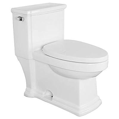 Transolid TBTS-2400-M Hayes 1-Piece Vitreous China Elongated 1.28 GPF Toilet Kit
