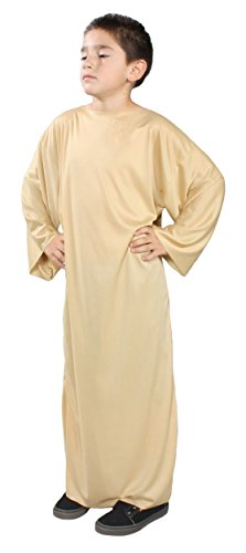 Alexanders Costumes Story of Christ Biblical Gown