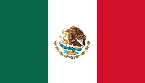 TENNER.LONDON Set of 5 Mexican Flag Iron on Screen Print Fabric Applique Machine Washable Transfer South America Bandera de México