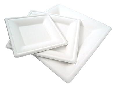 Brheez Square Heavy Duty 100% Natural Sugarcane Biodegradable Compostable Bagasse, Eco-friendly paper alternative