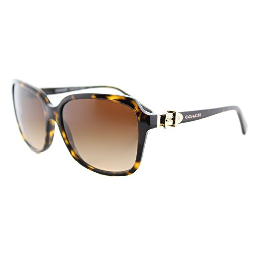 COACH Women's 0HC8179 Dark Tortoise Sunglasses