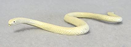 Amazon Com Collectible Wildlife Gifts Albino Texas Rat Snake Plastic 6 Inches Long F2039 B39 Toys Games