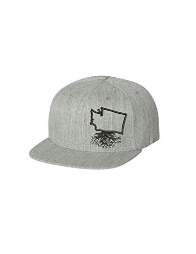 Wear Your Roots Washington Flexfit Snapback Hat, Grey, One Size - Adjustable