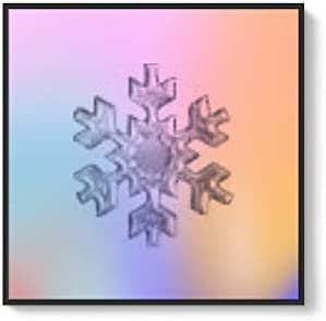 Framed for Living Room Bedroom Snowflake Theme for