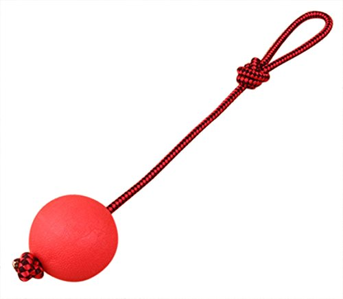 Younther Pet Elastic Solid Rubber Ball with Rope for Dog Training Play, Exercise & Fetch, No ()