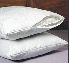 Amazon.com: SET OF 2 NEW ZIPPERED QUILTED PILLOW COVERS - KING ... : quilted pillow covers - Adamdwight.com