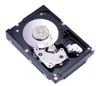 (Fujitsu 300GB SCSI Ultra320 80pin 10000 RPM 8MB 3.5-inch Form Factor Hard Drive (MAW3300NC) )