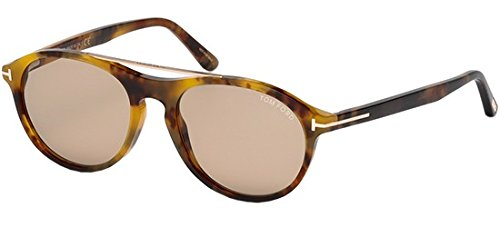 Lunettes de soleil Tom Ford Cameron-02 FT0556 C53 55E (coloured havana / brown)