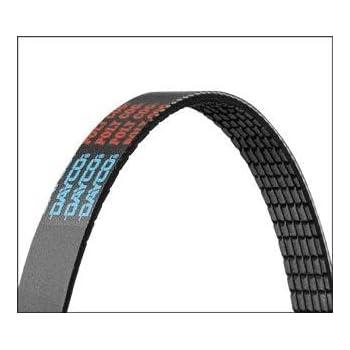 Dayco 5050551 Serpentine Belt