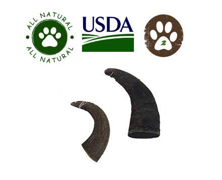 - Top Dog Chews 2 Pack Natural Water Buffalo Horns Edible Treats