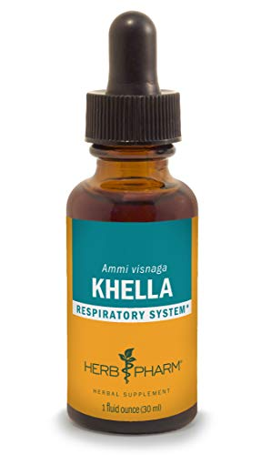 Herb Pharm Khella Liquid Extract for Respiratory System Support - 1 Ounce