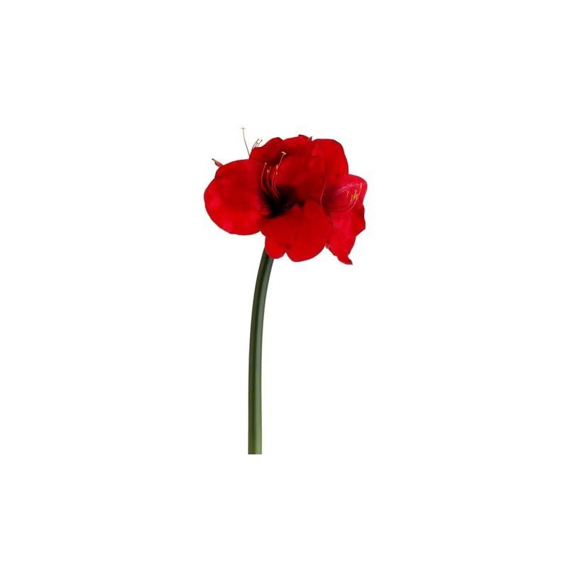 """silk flower arrangements 27"""" amaryllis spray red (pack of 12)"""