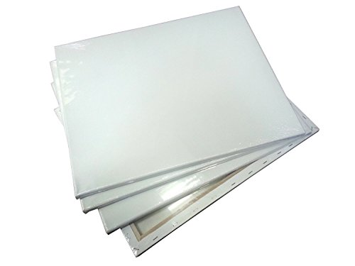 Generic Stretched Canvas, 16'' x 20'' x 3/4'', Box of 16 by Generic