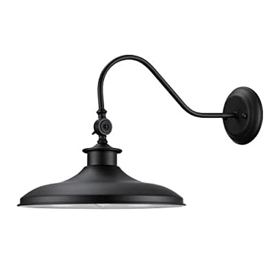 Globe Electric Aedan Swivel Wall Sconce, Black Finish, Frosted Glass Diffuser, 44095