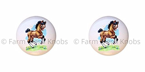 SET OF 2 KNOBS - Farm Horse Design #118 - Horses - DECORATIVE Glossy CERAMIC Cupboard Cabinet PULLS Dresser Drawer (118 Knob)
