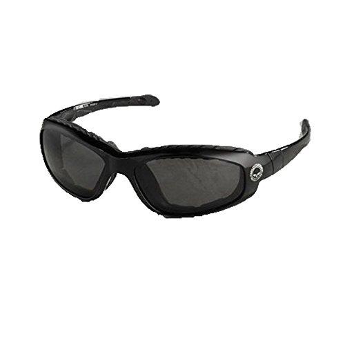 Harley-Davidson Men's Glide Performance Sunglasses/Goggles HDS 709