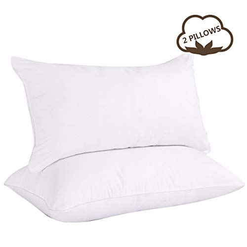 VODOF 2 Pack Soft Queen Size Quilted Pillow for Side Sleeper, Hotel Style Premium Bed Pillow,Queen Size 20 x 30 Inches(White Corded Edge)