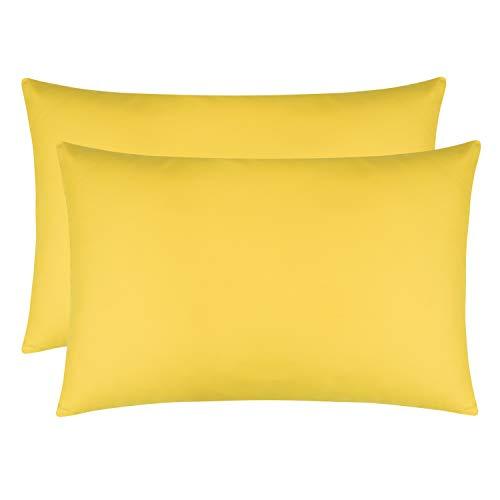 ALCSHOME Queen Pillowcases, 2 Pack Ultra Soft Microfiber Premium Quality, 20x30 (Yellow, Queen)