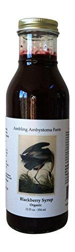 Blackberry Syrup Organic, 12 oz. (Gluten Free Organic Corn Syrup)