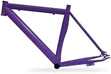 Riscko 001lurb Cuadro Bicicleta Personalizada Fixie Talla Lurb Morado: Amazon.es: Deportes y aire libre