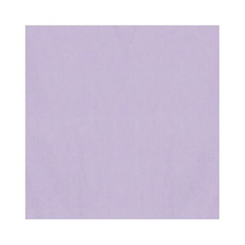 Amscan Solid Color Tissue Sheets Party Gift Bag