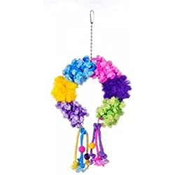 Prevue Pet Products BPV62668 Calypso Creations Bird Toy, Colorful Clusters
