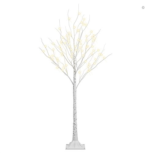 Top Birch Tree Branches: Amazon.com RH53
