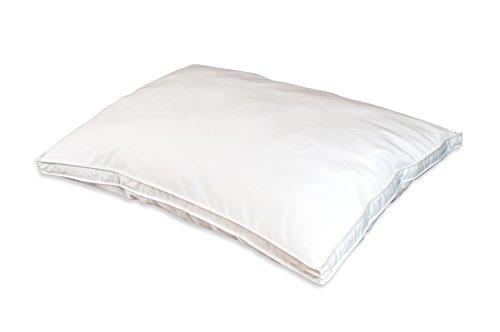 free shipping Austin Horn Classics DuPont Sorona Down Alternative Sleeping Pillow, Standard, White