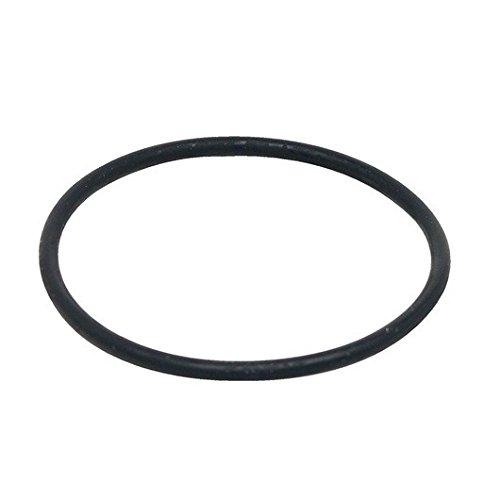Fluval Motor Seal Ring for FX5 High Performance Canister Filter (Motor Fluval)