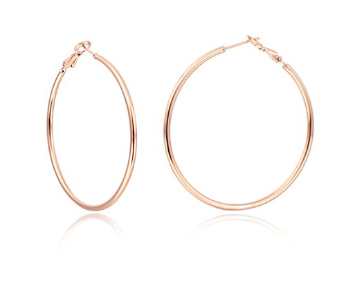 - IDB Stainless Steel Big Hoop Earrings - Gold/Rose Gold/Silver/Black Tones - 7 different sizes to choose from (Rose Gold 0.4 inches (10mm))