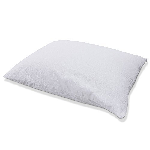 Protect-A-Bed Premium Waterproof Pillow Protector, Queen Pillow Size (21x31 in.)