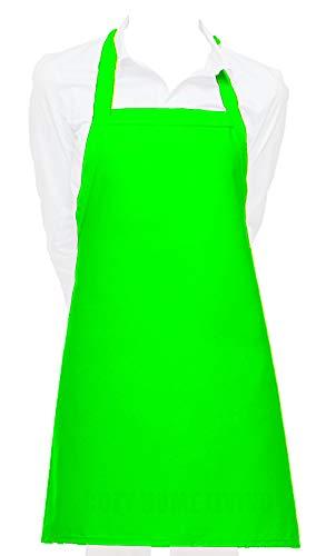 Nylon Apron - Cozy Home Living Vinyl Waterproof Apron Ultra Lightweight (1, Lime Green)