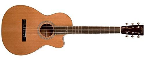 Recording King RP1-16C Torrefied Adirondack Acoustic (Adirondack Dreadnought Acoustic Guitar)
