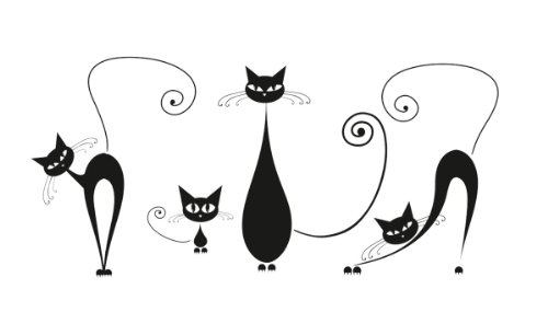 Amazon.com: Platin Art Wall Decal Deco Sticker, Black Cats: Home u0026 Kitchen