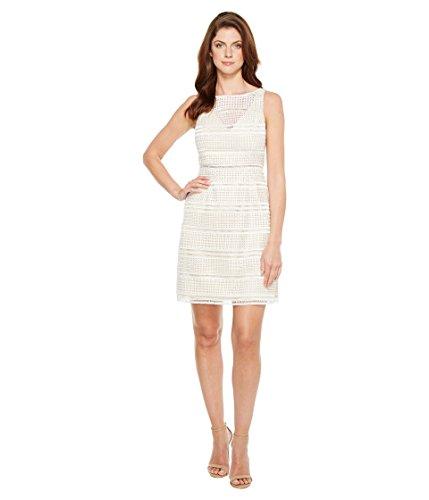 検出表現ジレンマ[アドリアナパペル] Adrianna Papell レディース Eyelet Lace A-Line Skirt Dress ドレス [並行輸入品]