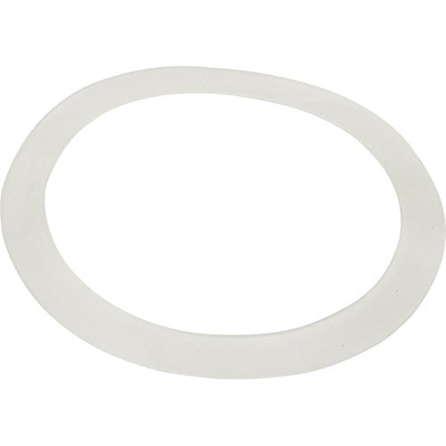 Buy waterway 711-7300 old faithful jet flat gasket