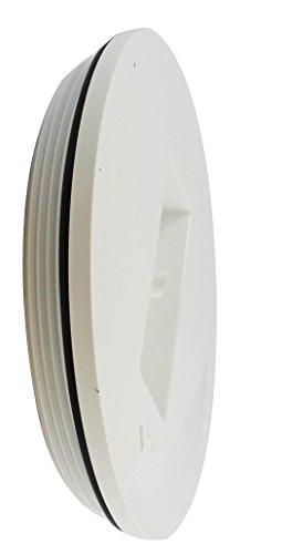 Canplas 193066 PVC DWV Countersink Plug, 6-Inch, White (Threaded Plug Pvc)