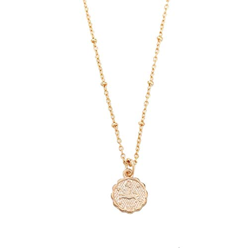 AEVIO Constellation Necklace Zodiac Horoscope Medallion Pendant Jewelry for Women and Girls, Trend All-Match for Girls and Ladies(Leo)